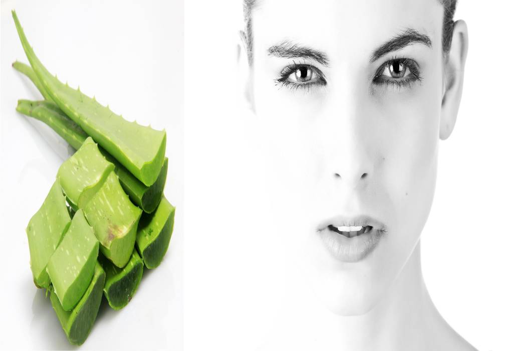 Aloe Vera for Skin: Benefits, Usage, and Precaution