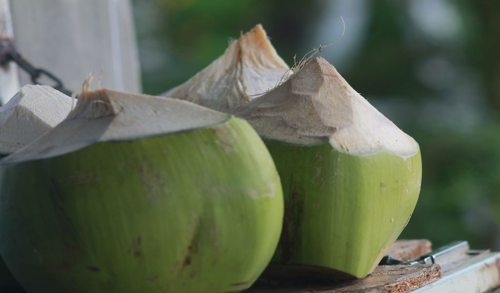 is coconut water good for skin